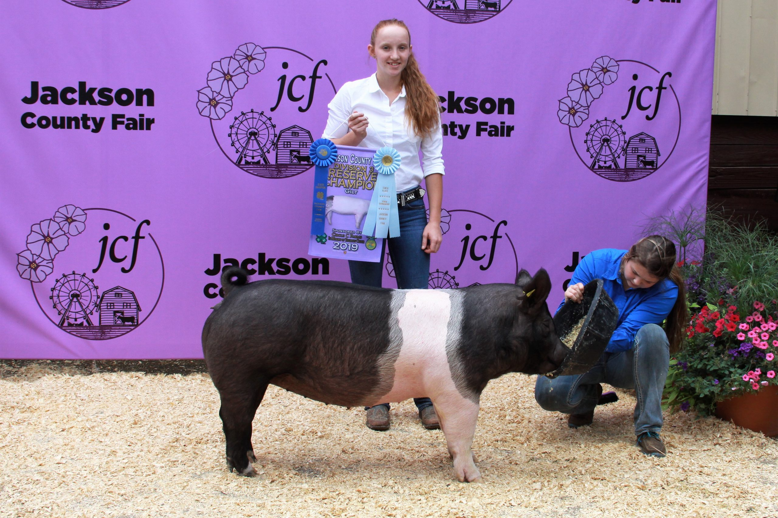 2019 Jackson County Fair, Division 3 Reserve Champion Gilt, Sired by Tyrant